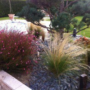 entretien de jardin vineuil harmonivert lp2 jardins