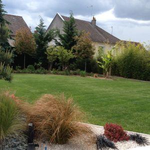 pelouses vineuil paysagiste harmonivert