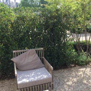 harmonivert paysagiste entretien de jardin loir et cher